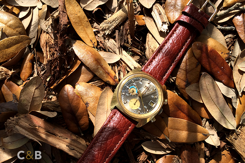 Brown Strap / Gold Chronograph